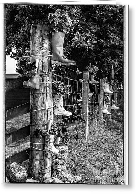 Owner Greeting Cards - Rainboots Flowerpots in Black and White Greeting Card by Iris Richardson