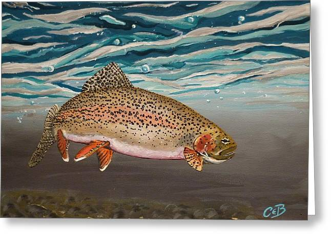 Rainbow Trout Greeting Cards - Rainbow Addiction Greeting Card by Chad Berglund