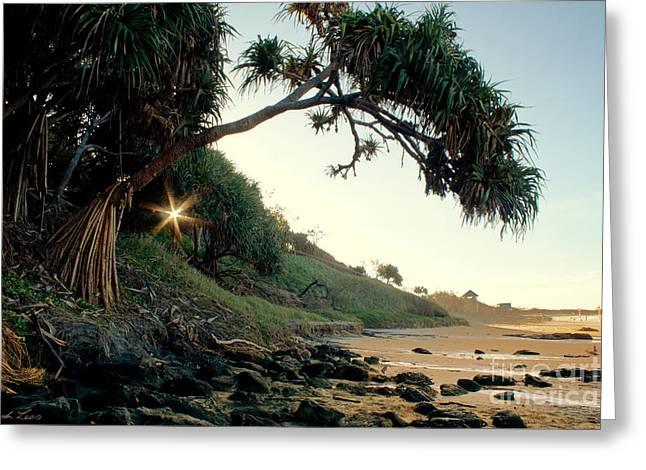 Sandy Beaches Greeting Cards - Rainbow Beach Greeting Card by Linda Lees