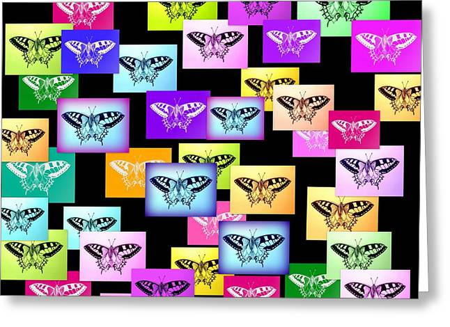 Cushion Drawings Greeting Cards - Rainbow Butterflies Greeting Card by Cathy Jacobs