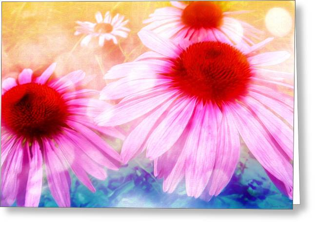 Aster Mixed Media Greeting Cards - Rainbow Colored Coneflowers Greeting Card by Shawna  Rowe