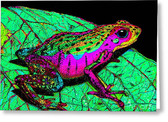 Amphibians Drawings Greeting Cards - Rainbow Frog 3 Greeting Card by Nick Gustafson
