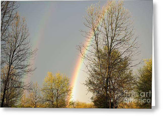 Double Rainbow Greeting Cards - Rainbow Greeting Card by Gary Richards