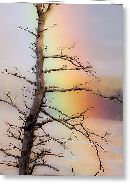 Matanuska Greeting Cards - Rainbow Implications Greeting Card by Ron Day