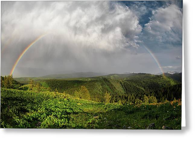 Rainbow Light And Form Greeting Card by Leland D Howard