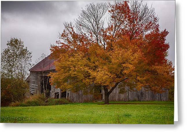 New England Autumn Greeting Cards - Rainbow of color in front of NH barn Greeting Card by Jeff Folger