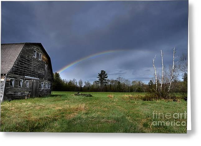Rainbow On The Farm Greeting Card by Alana Ranney