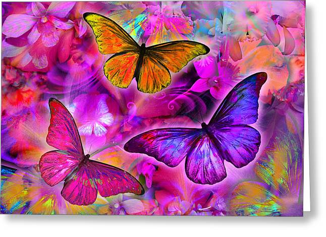 Coloured Flower Greeting Cards - Rainbow Orchid Morpheus Greeting Card by Alixandra Mullins