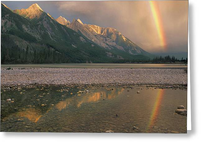Rainbow River Greeting Cards - Rainbow Over Athabasca River Jasper Greeting Card by Tim Fitzharris