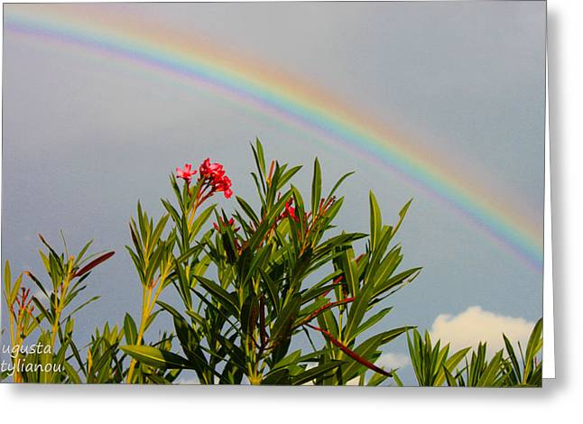 Colourfull Greeting Cards - Rainbow Over Flower Greeting Card by Augusta Stylianou