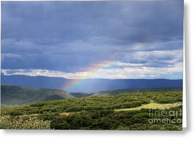 Black Painted Edges Greeting Cards - Rainbow Over The Black Canyon Greeting Card by Janice Rae Pariza