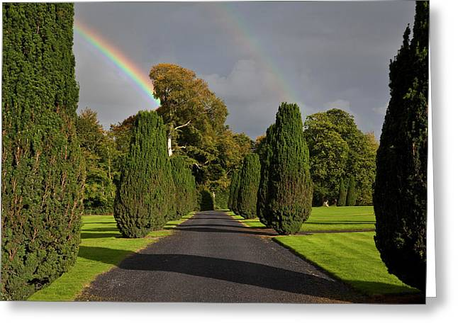 Rainbow Over The Yew Walk In Emo Court Greeting Card by Panoramic Images