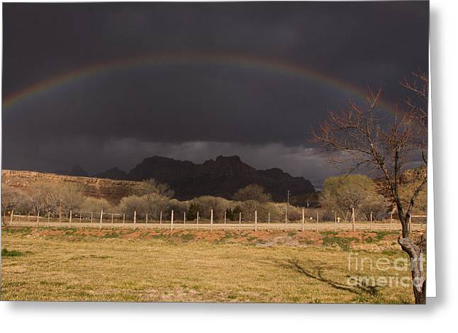 Geobob Greeting Cards - Rainbow Over Zion National Park Utah Greeting Card by Robert Ford