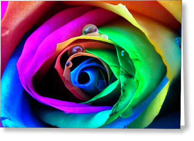 Rainbow Rose Greeting Card by Juergen Weiss