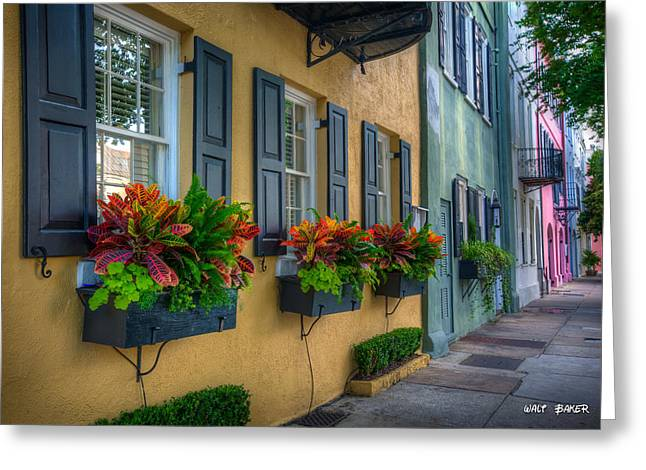 Flower Boxes Greeting Cards - Rainbow Row Greeting Card by Walt  Baker