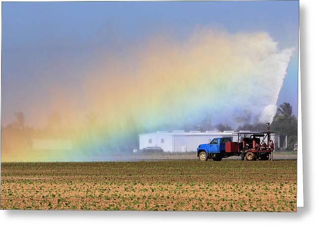 Farmers Field Greeting Cards - Rainbow Greeting Card by Rudy Umans