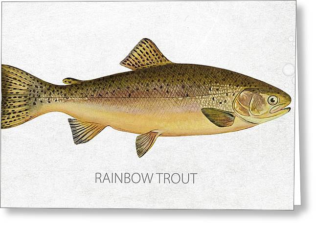 Salmon Digital Greeting Cards - Rainbow Trout Greeting Card by Aged Pixel