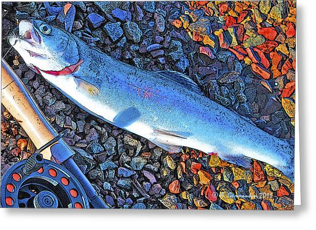 Rainbow Trout Digital Art Greeting Cards - Rainbow Trout Dry Fly Reel Poster Image Greeting Card by A Gurmankin