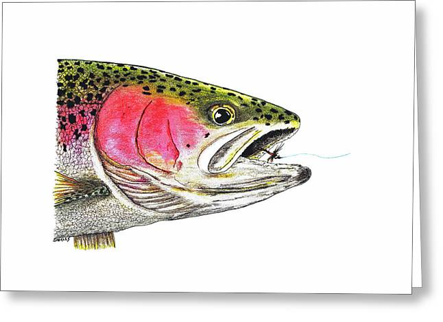 Rainbow Trout Greeting Cards - Rainbow Trout Head Study Greeting Card by Tim Shoales