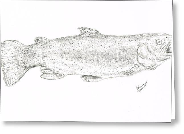 Rainbow Trout Drawings Greeting Cards - Rainbow Trout Greeting Card by Joann Renner