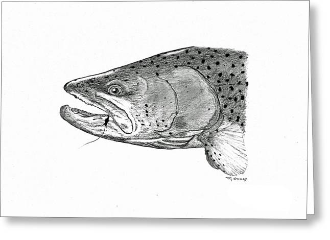 Rainbow Trout Drawings Greeting Cards - Rainbow Trout Male Head Study Greeting Card by Tim Shoales