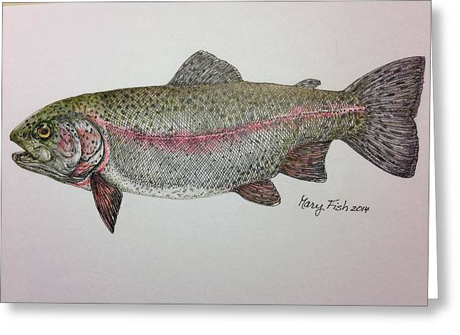 Rainbow Trout Drawings Greeting Cards - Rainbow Trout Greeting Card by Mary Fish