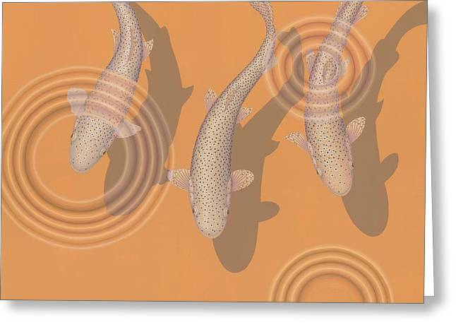 Mykiss Greeting Cards - Rainbow Trout Greeting Card by Nathan Marcy