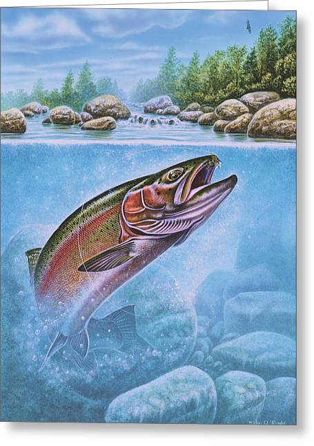 Rainbow Trout Greeting Cards - Rainbow Trout Split Level Greeting Card by Jon Q Wright