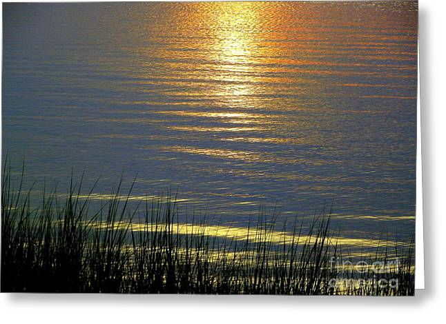 Rainbow Waters Greeting Card by CapeScapes Fine Art Photography
