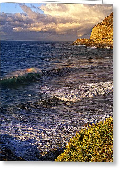 Rainbow Wave Greeting Card by Ron Regalado