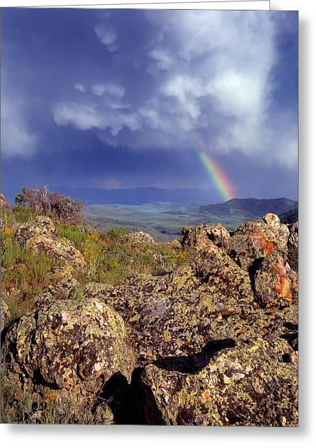 Rainbows Greeting Card by Leland D Howard
