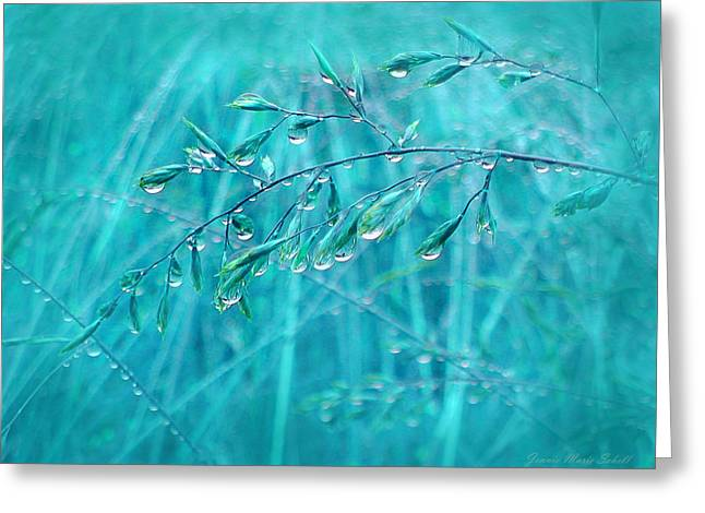 Recently Sold -  - Fall Grass Greeting Cards - Raindrops Falling on Teal Blue Grasses Greeting Card by Jennie Marie Schell