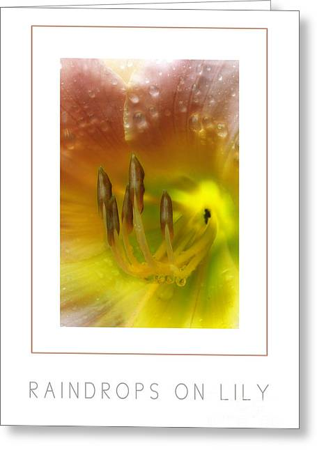 Mike Nellums Greeting Cards - Raindrops on Lily poster Greeting Card by Mike Nellums