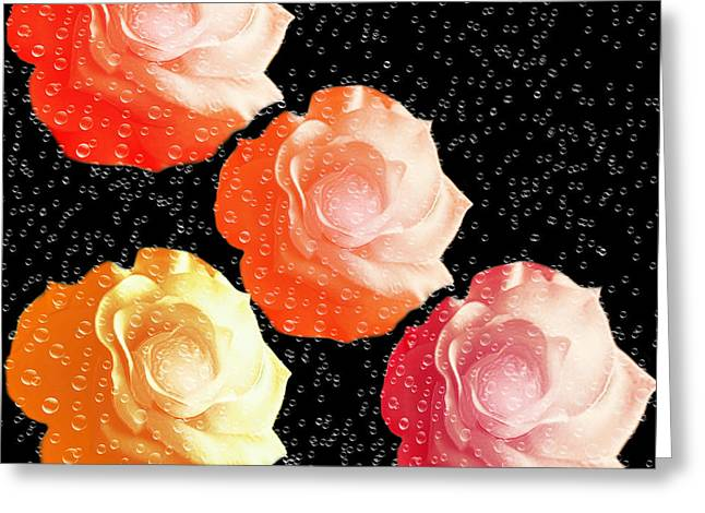 Water Drops On Rose Greeting Cards - Raindrops On Roses - My Favorite Things Greeting Card by Andee Design