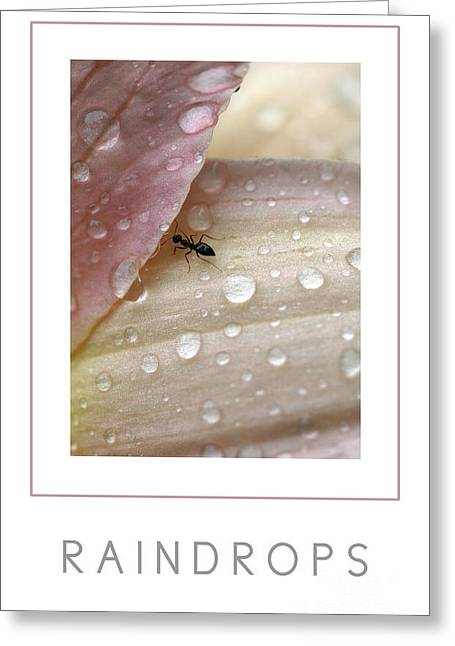 Mike Nellums Greeting Cards - Raindrops poster Greeting Card by Mike Nellums