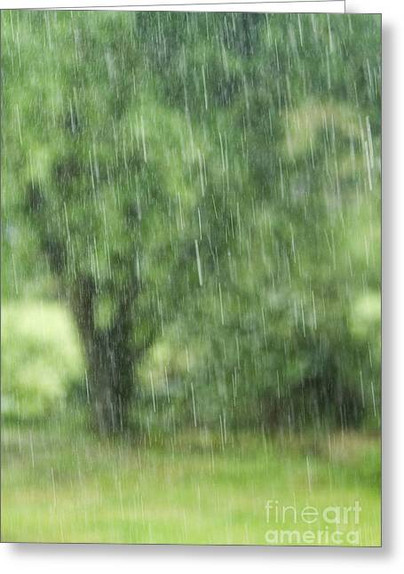 Summer Squall Greeting Cards - Rainfall Greeting Card by Dan Radi