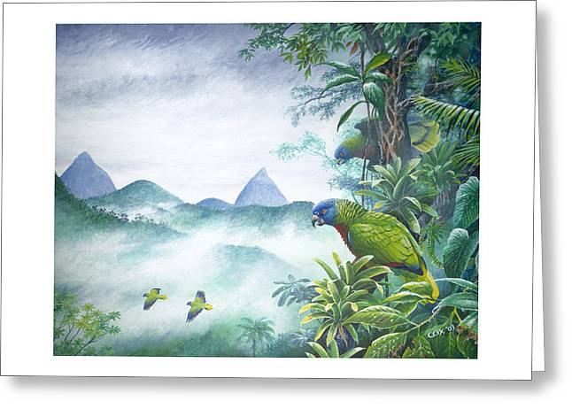 St. Lucia Parrot Greeting Cards - Rainforest Realm - St. Lucia Parrots Greeting Card by Christopher Cox
