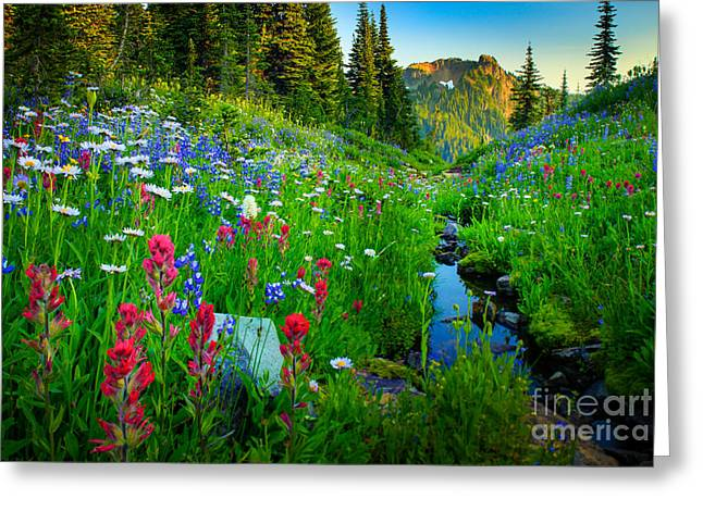 Harmonious Photographs Greeting Cards - Rainier Wildflower Creek Greeting Card by Inge Johnsson