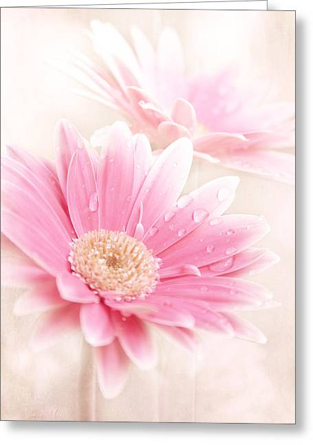 Lemon Art Digital Art Greeting Cards - Raining Petals Greeting Card by Sharon Mau