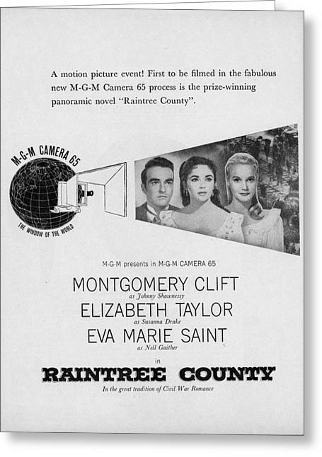 1957 Movies Greeting Cards - Raintree County Greeting Card by Douglas Settle