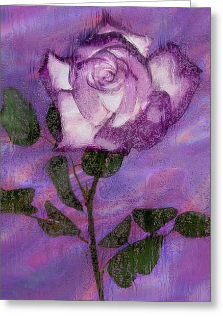 Cultivation Digital Art Greeting Cards - Rainy Day Rose Greeting Card by Jack Zulli