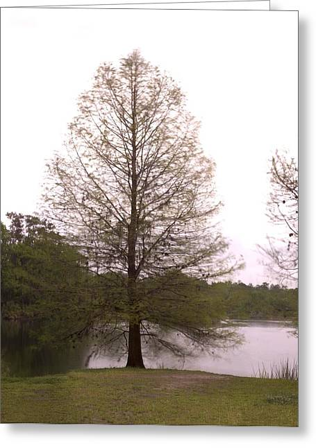 Gigapan Greeting Cards - Rainy Day Greeting Card by William Ragan