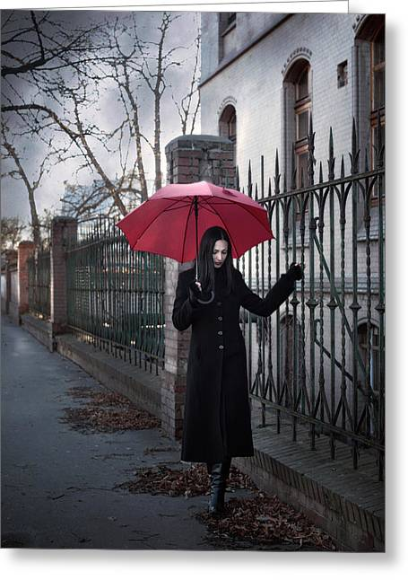 Mystery Photographs Greeting Cards - Rainy day Greeting Card by Wojciech Zwolinski