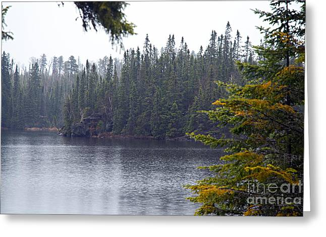 Rainy Morning On Snipe Lake Greeting Card by Larry Ricker