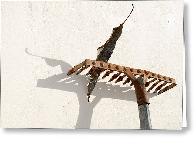 William Voon Greeting Cards - Rake With Leaf Greeting Card by William Voon