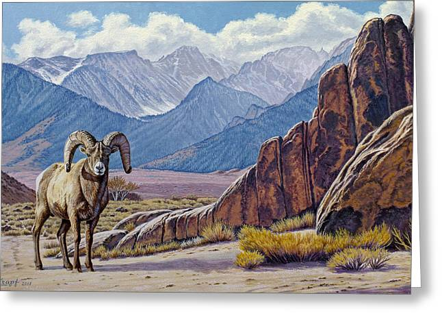 Bighorn Greeting Cards - Ram-Eastern Sierra Greeting Card by Paul Krapf
