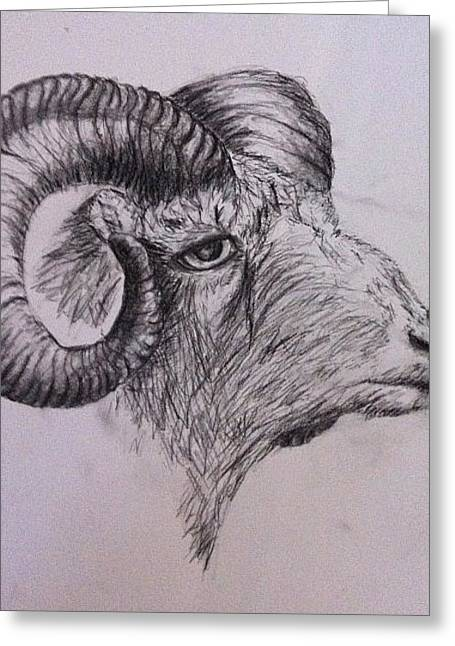 Ram On Greeting Card by Jessica Sanders