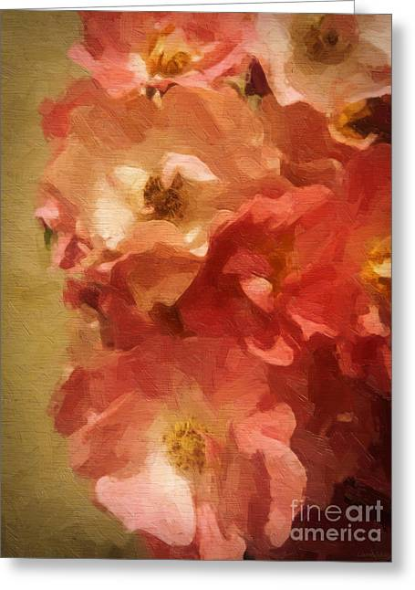 Multiflora Greeting Cards - Ramblin Rose Memories Greeting Card by Lianne Schneider