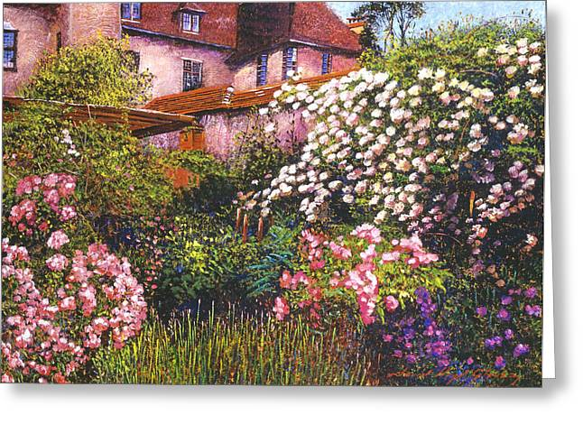 Rose Bushes Greeting Cards - Rambling Rose Impressions Greeting Card by David Lloyd Glover