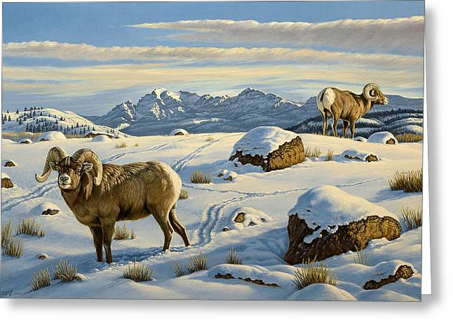 Wildlife Greeting Cards - Rams Down from Junction Butte Greeting Card by Paul Krapf